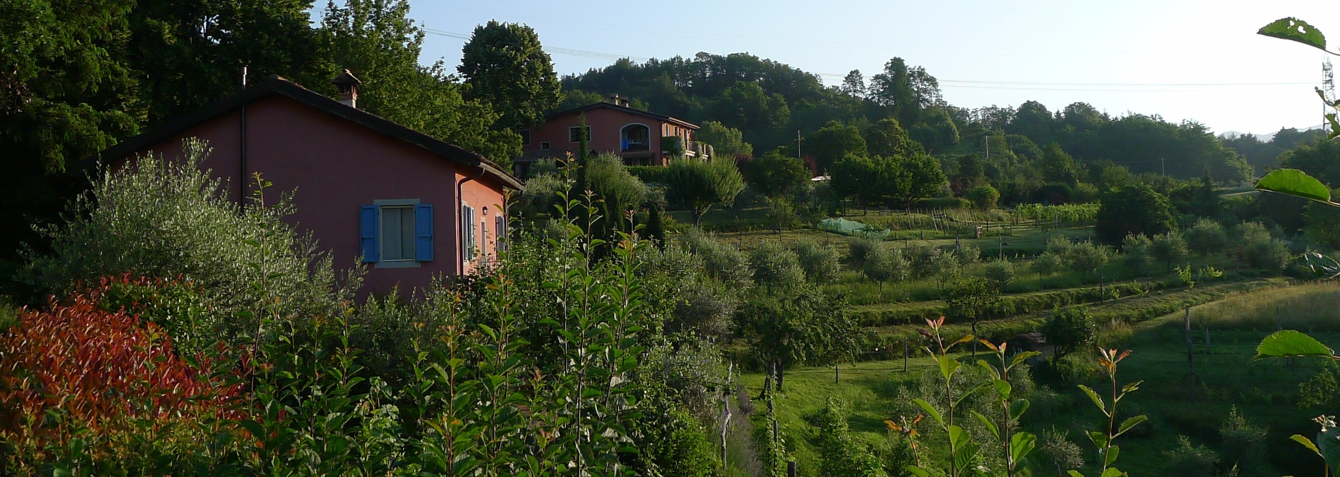 View of Col di Lavacchio Agriturismo, Tuscany