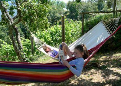 hammocks1