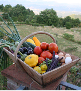 organic produce col di lavacchio tuscany italy